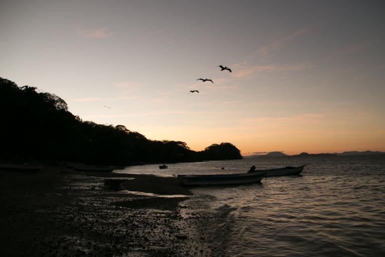 Isla Venado