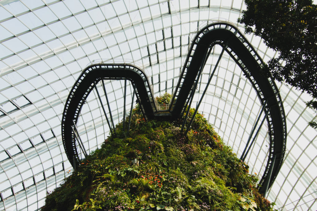 Cloud Forest, Singapore