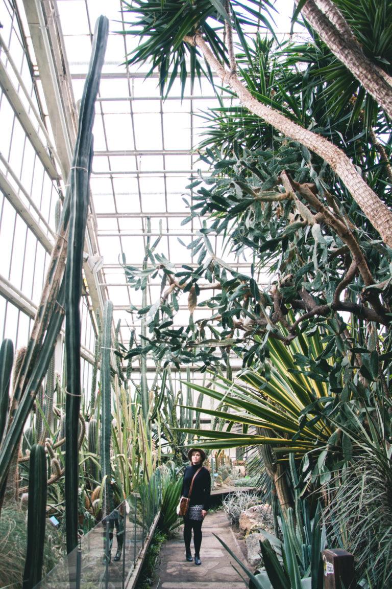 Palm House, Poznan, Poland